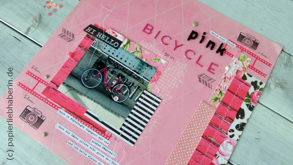 Pink bicycle_im detail_III